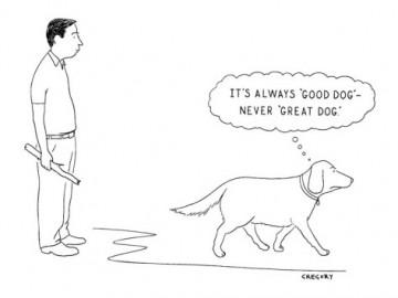 good dog not great dog